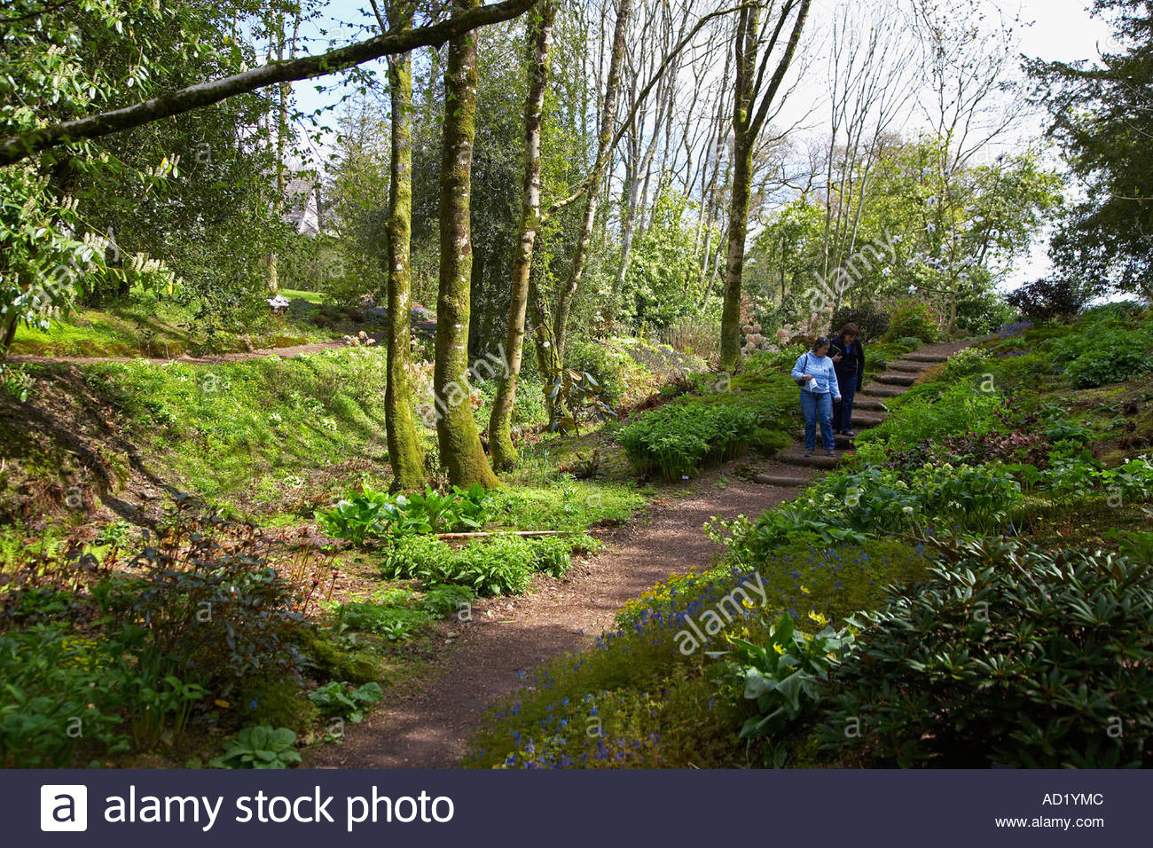 Aberglasney Gardens Llandeilo, Aberglasney Gardens, Llandeilo, West Wales, UK Stock Photo ...