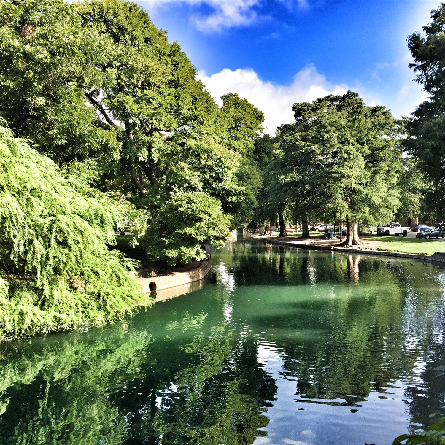 Alcazar Garden San Diego, 2017 Brackenridge Park Summit - The City of San Antonio - Official ...