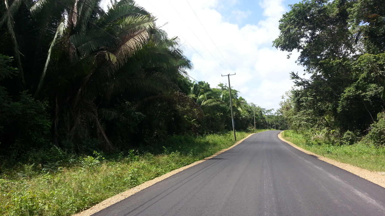Altun Ha Old Northern Highway, BZ118: UNAVAILABLE: 20 Acres with +-450 Feet on Old Northern ...