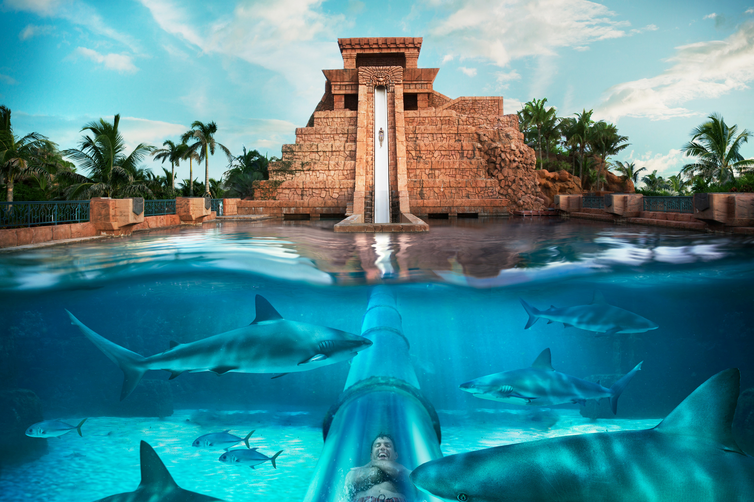 Aquaventure New Providence and Paradise Islands, Aquaventure at Atlantis, Paradise Island | Bahamas Family ...