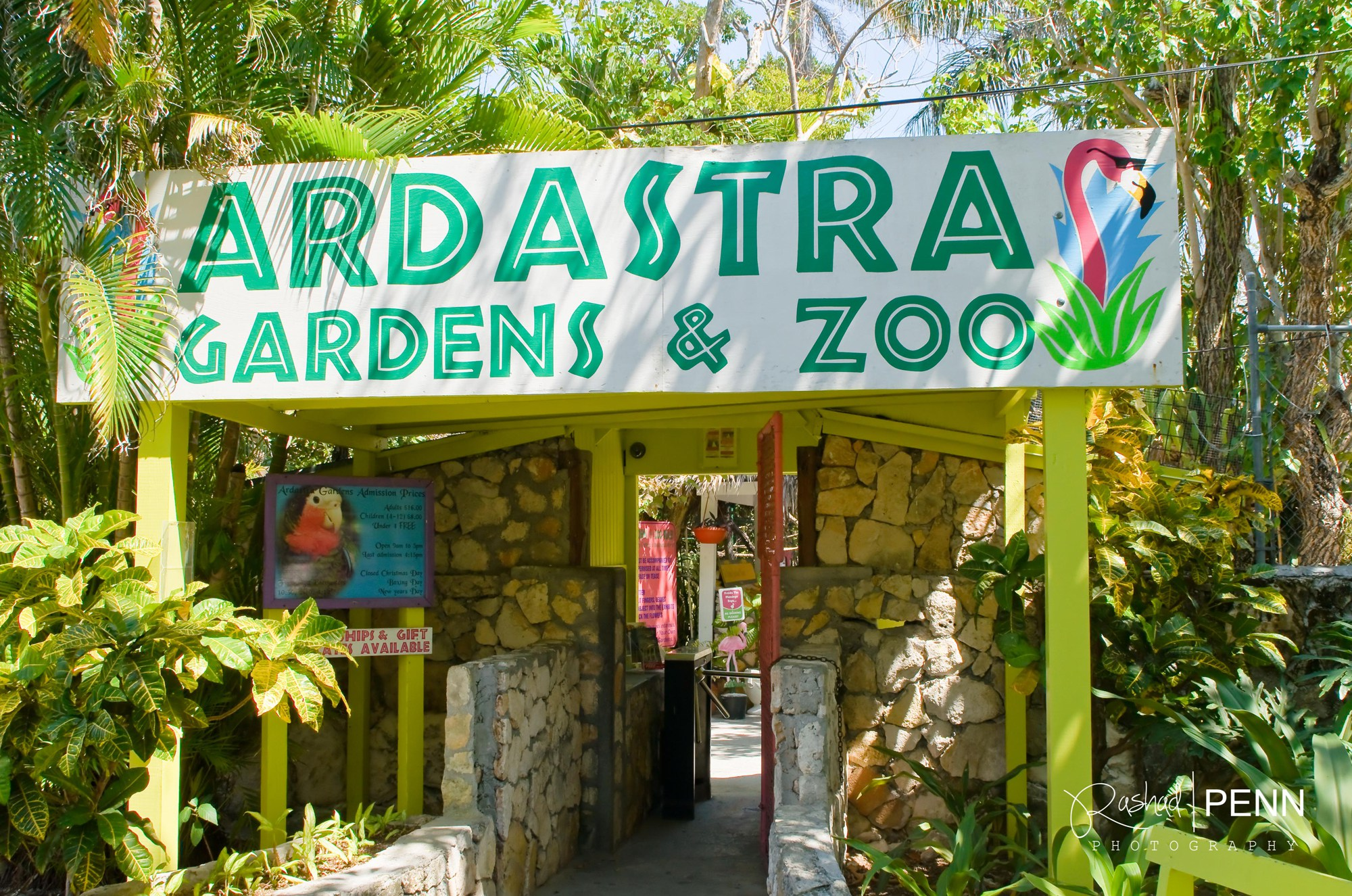 Ardastra Gardens, Zoo, and Conservation Centre New Providence and Paradise Islands, What to do in Nassau – Ardastra Gardens and Zoo | THE BAHAMIAN ...