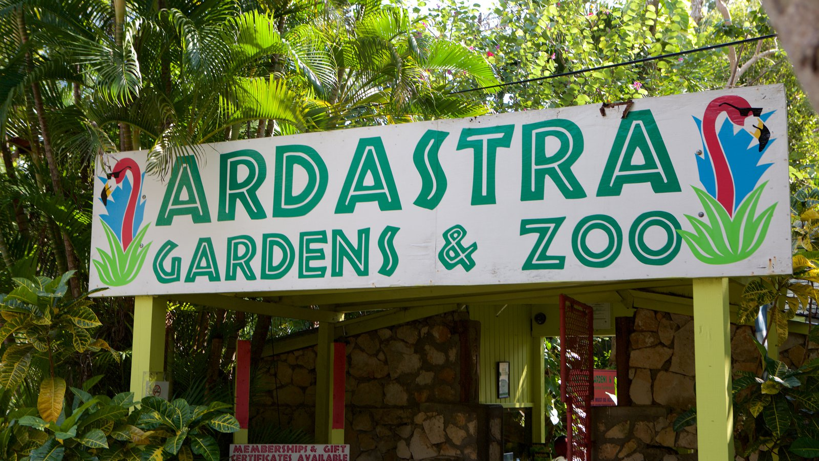 Ardastra Gardens, Zoo & Conservation Center Nassau, Island & Reefs Pictures: View Images of Ardastra Gardens, Zoo and ...