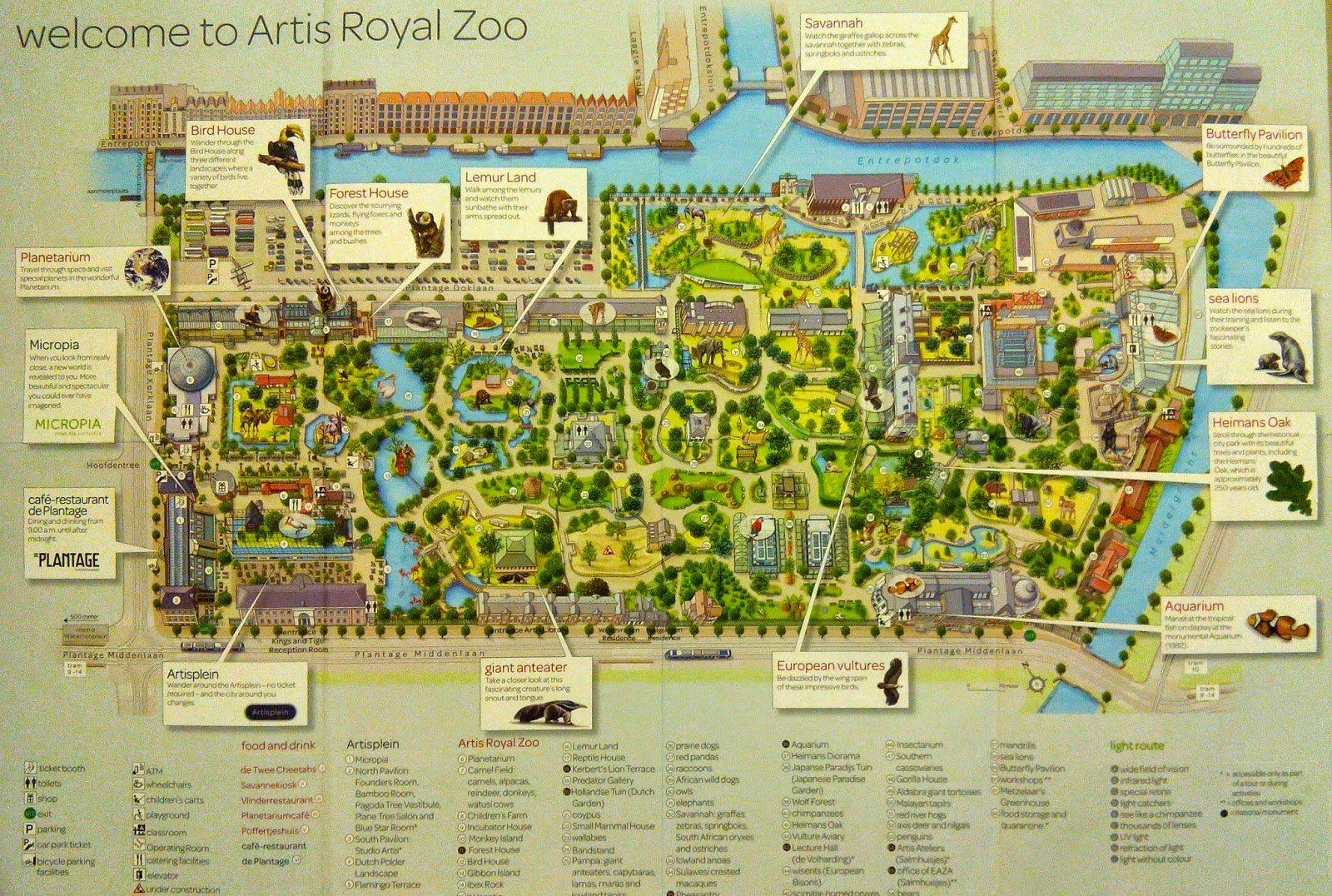 Artis Royal Zoo Amsterdam, AHEH: Amsterdam: I AMSTERDAM (Artis Royal Zoo and NEMO Science Centre)