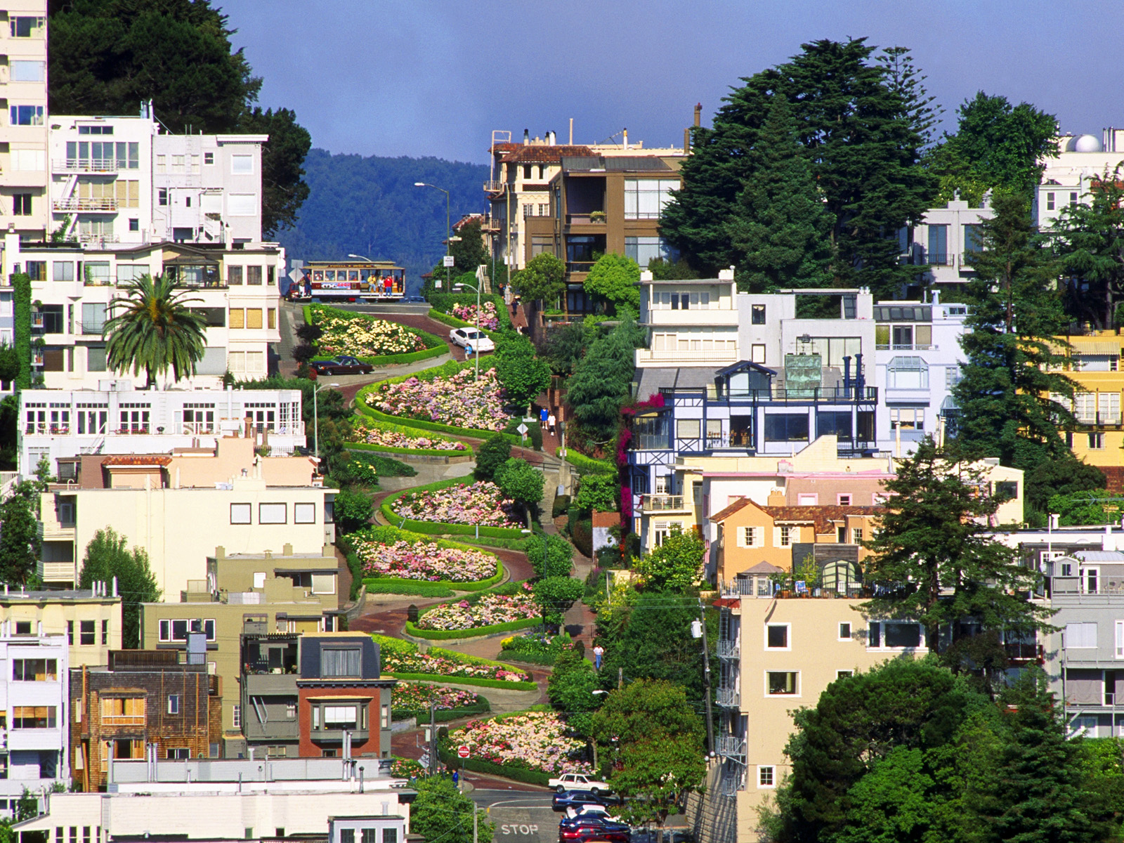 Axford House San Francisco, Zig zag in San Francisco's Lombard Street | Planning road trip ...