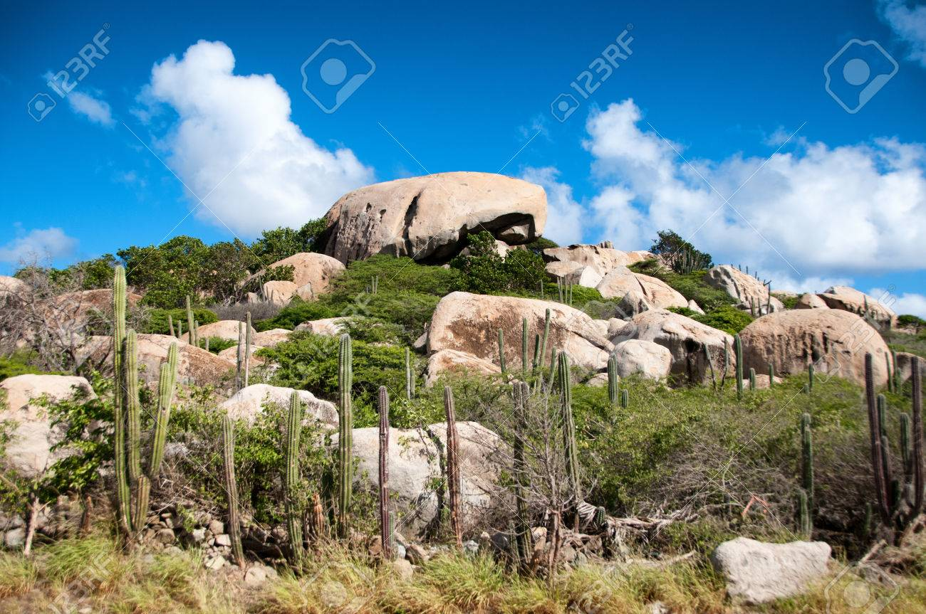 Ayo Rock East Coast, Cactus Growing On The Ayo Rock Formations, A Group Of Monolithic ...