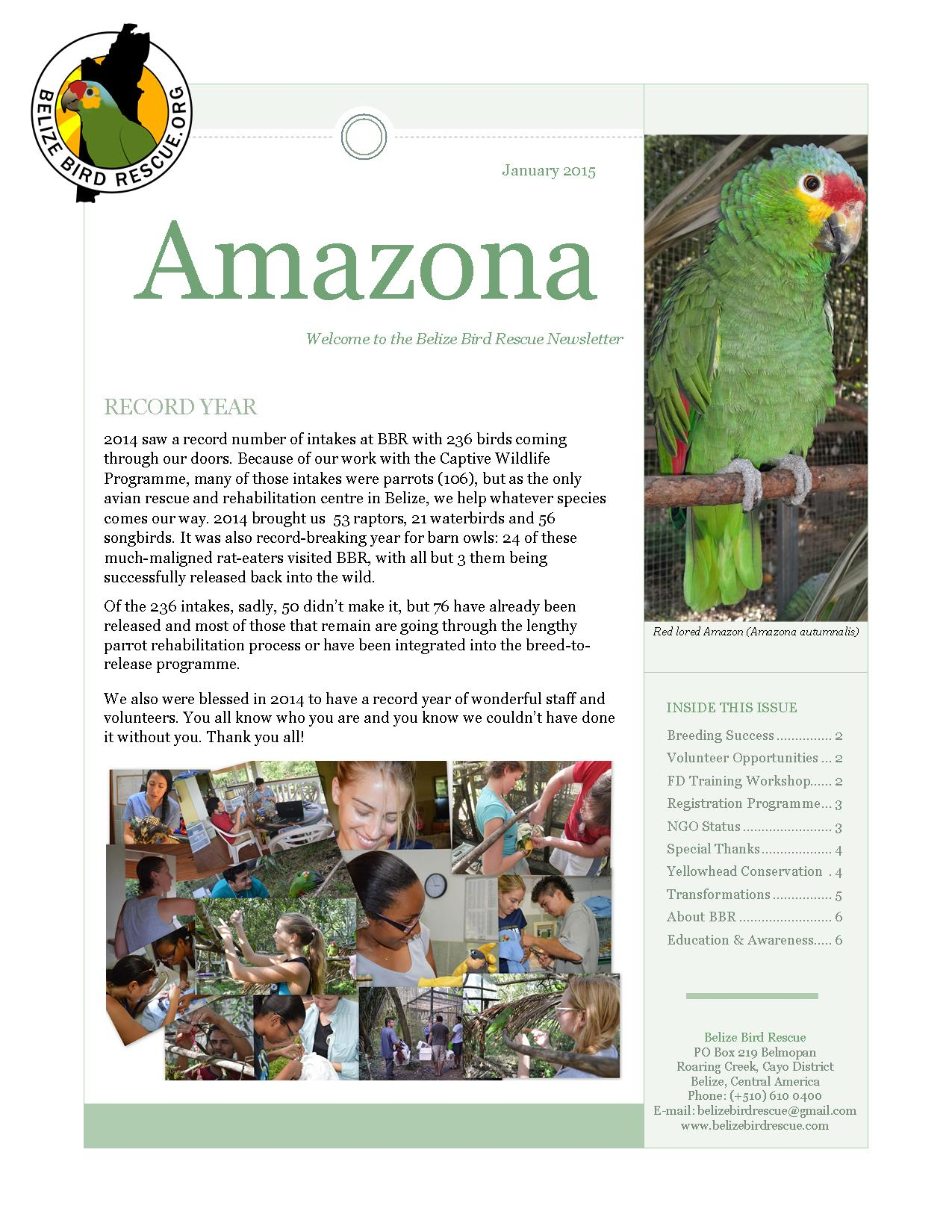 Belize Bird Rescue The Cayo District, First newsletter of 2015 | Belize Bird Rescue