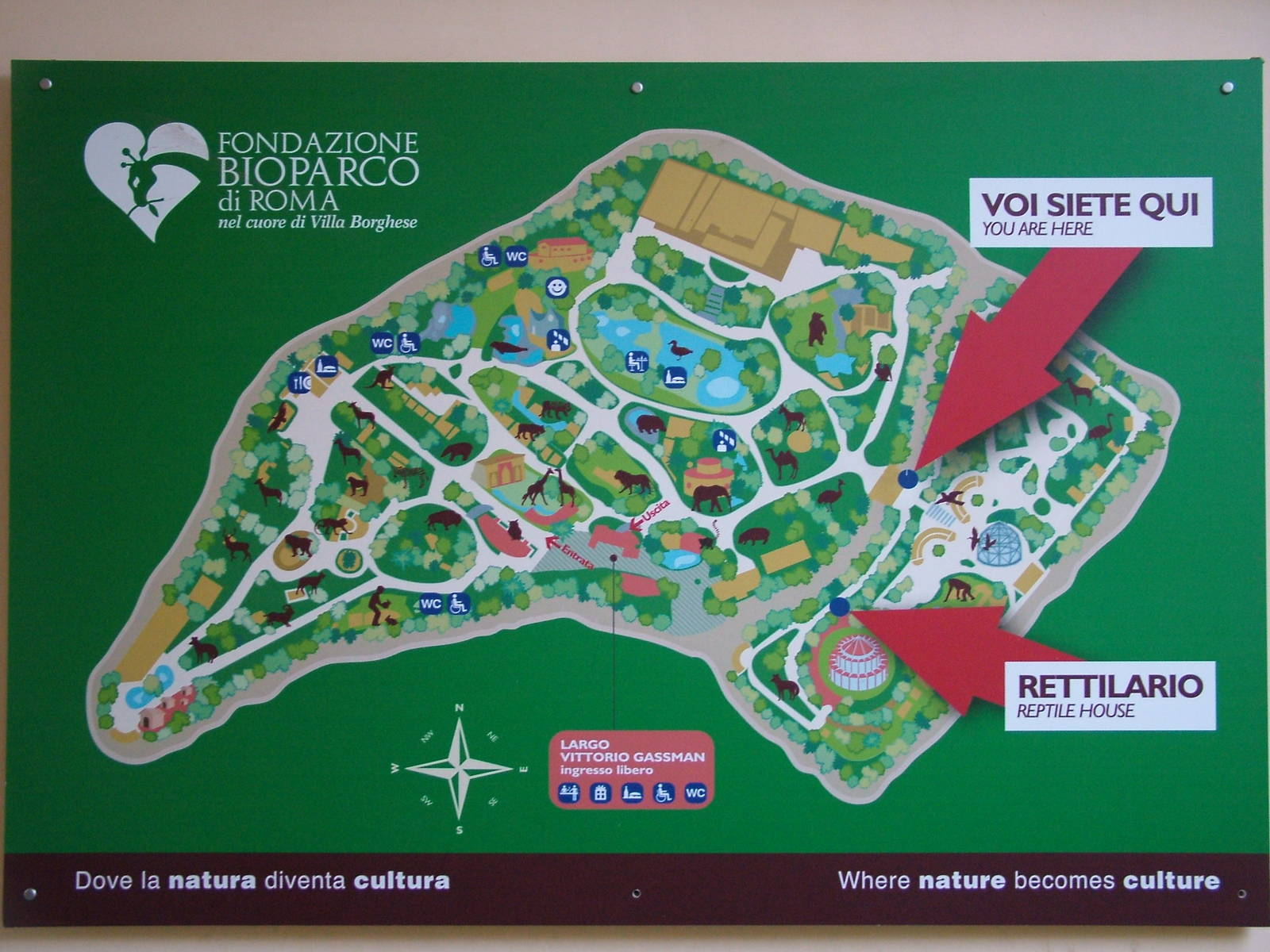 Bioparco Rome, Map of Bioparco Rome 15/10/09 | ZooChat