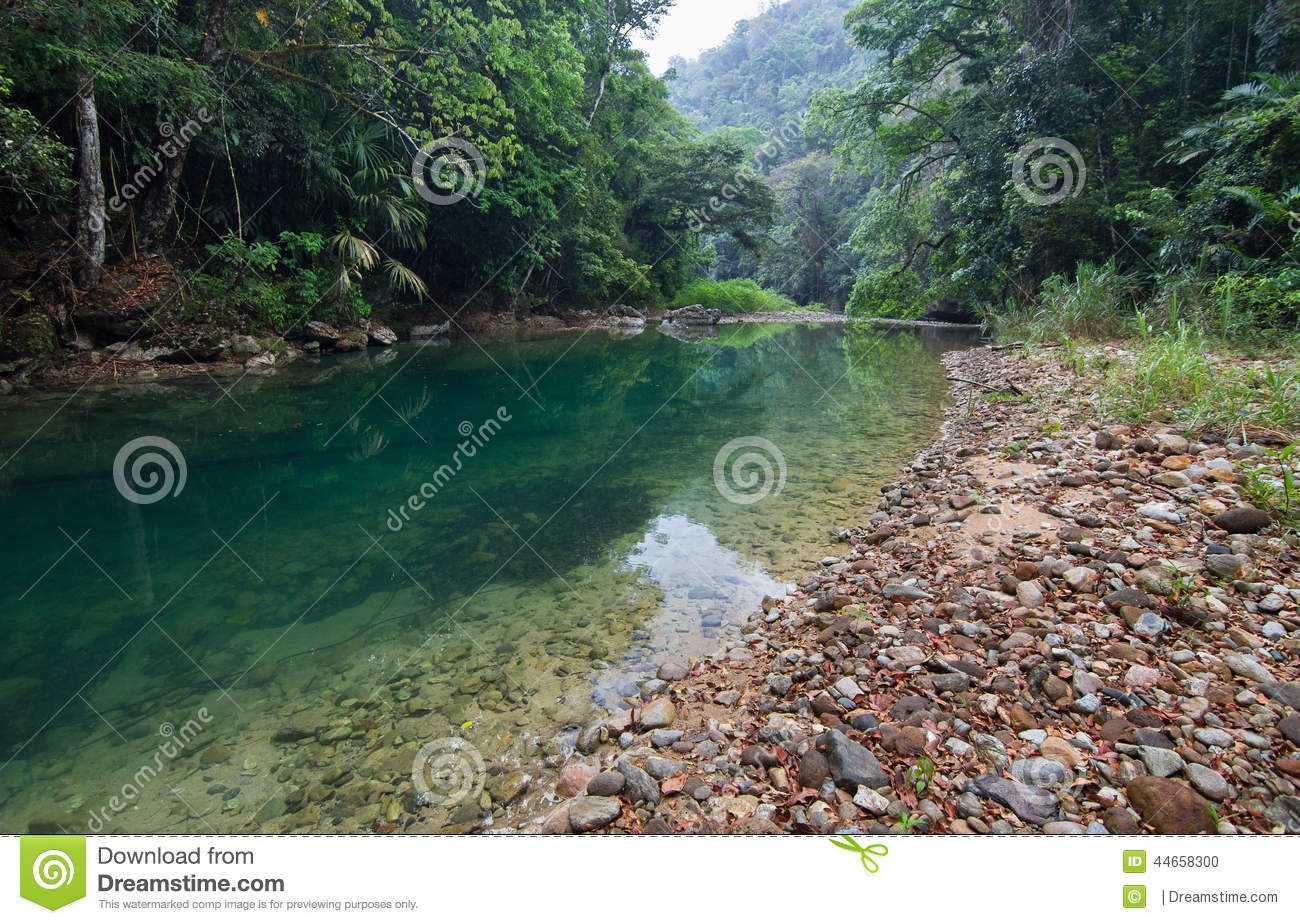 Bladen Nature Reserve The Deep South, Jungle River stock photo. Image of pristine, belize, rocks - 44658300