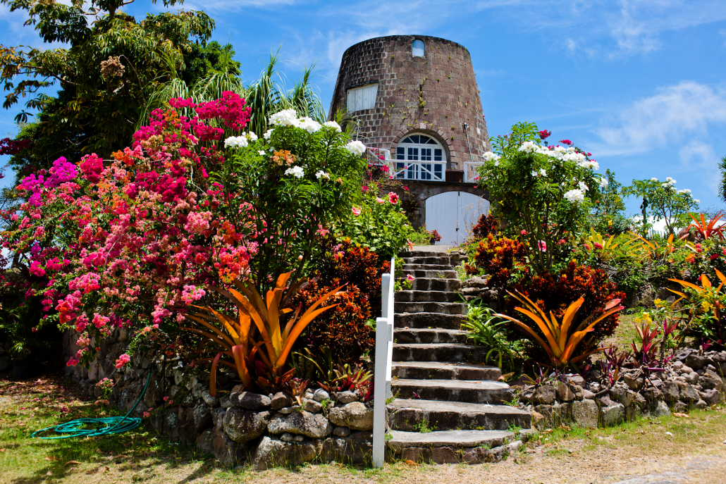 Botanical Gardens of Nevis South Nevis, St. Kitts and Nevis Bureau of Standards >> » About St. Kitts and Nevis