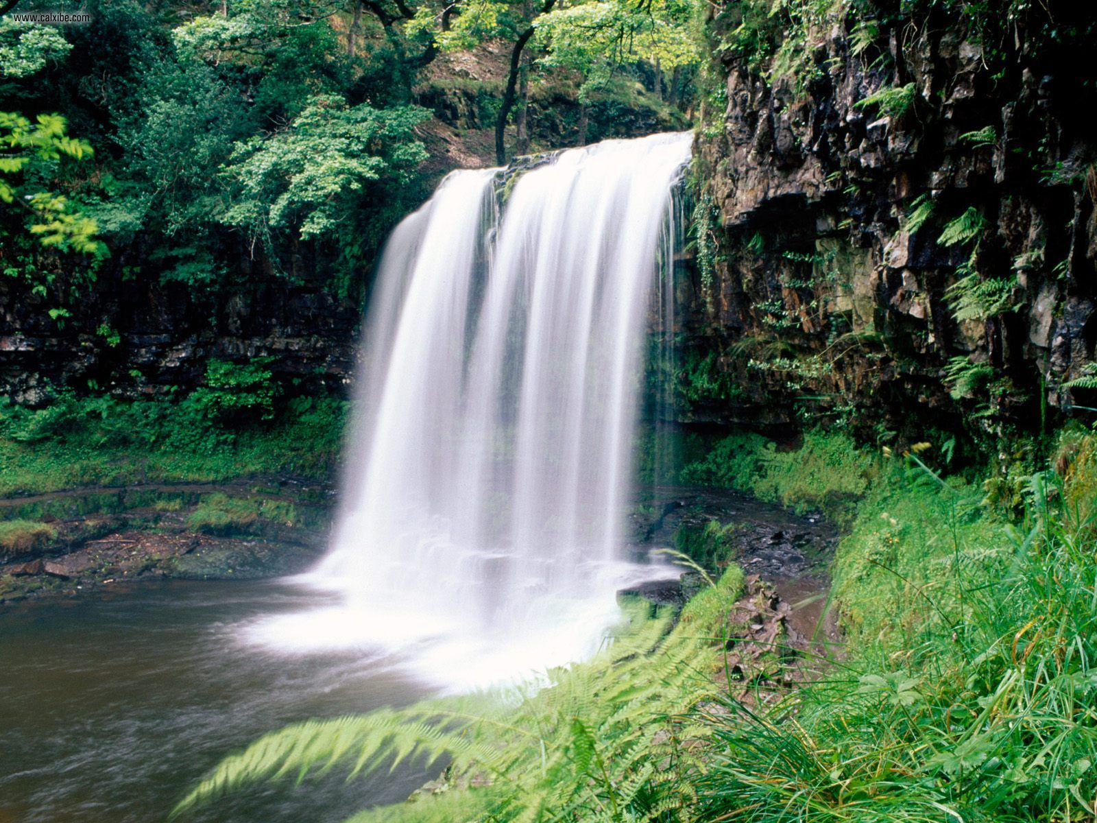 Brecon Beacons National Park South Wales, Nature: Brecon Beacons National Park South Wales, picture nr. 23093