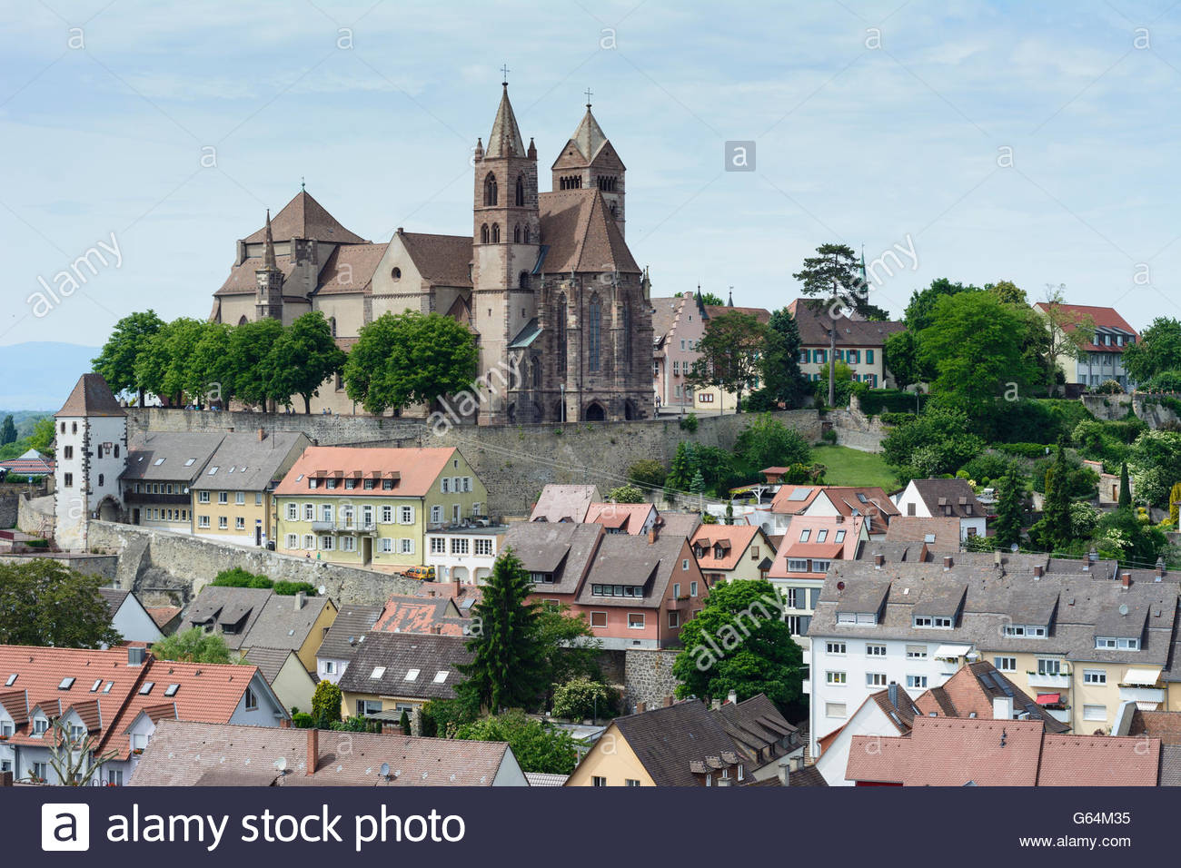 Breisach am Rhine The Black Forest, view from Eckartsberg to the Burgberg with the cathedral, Breisach ...