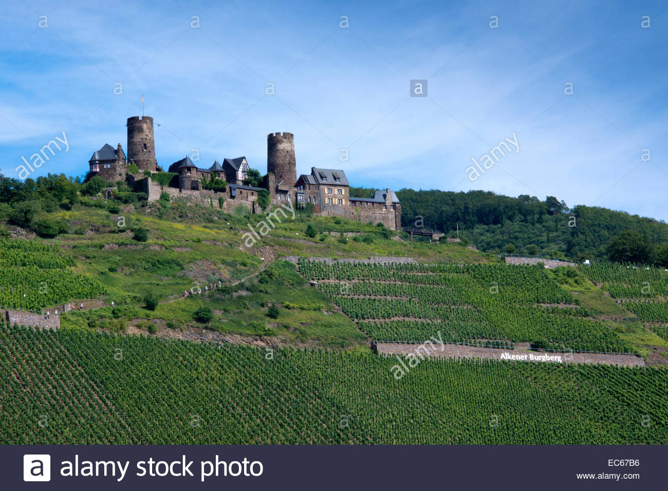 Burg Thurant The Rhineland, View of the Burg Thurant castle, near Alken, Moselle, district ...