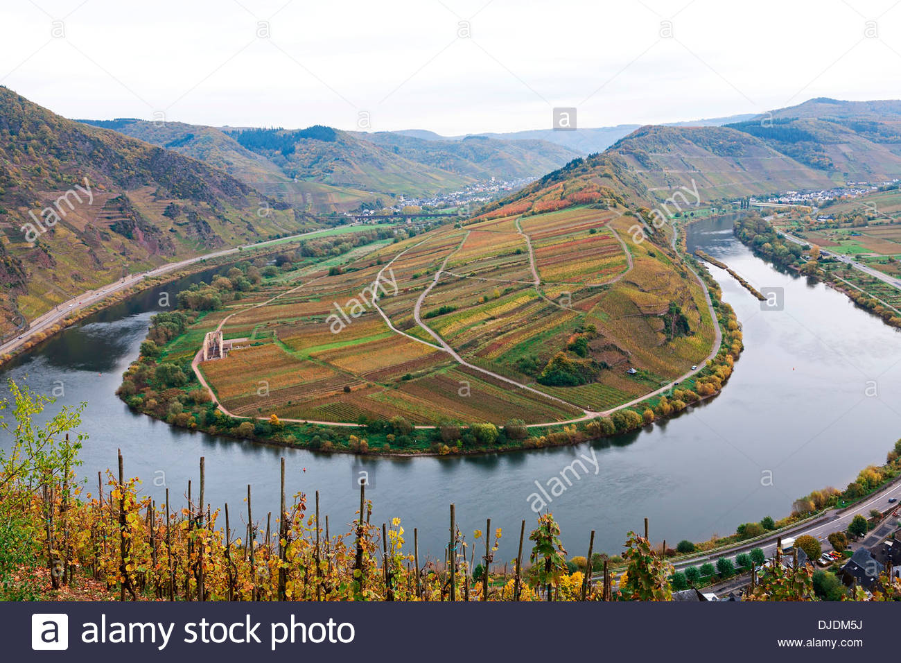 Calmont The Rhineland, Moselle River loop in autumn, view from Calmont Bremm Stock Photo ...