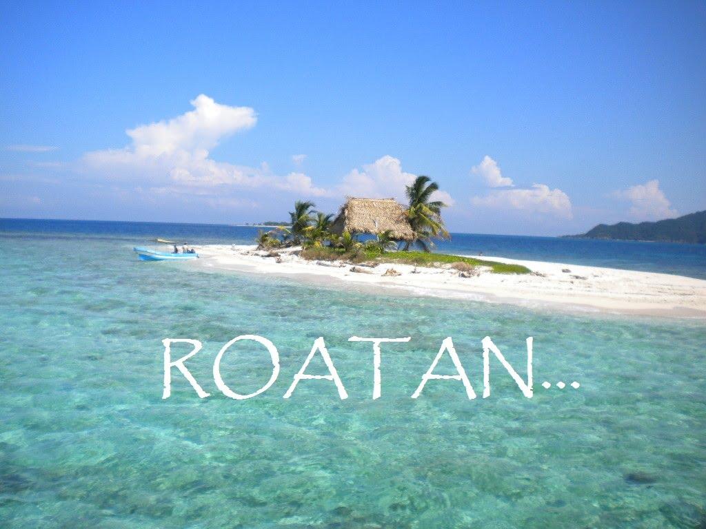 Cannon Island Excursion La Mosquitia, The 7 Most Amazing things to do in Roatan! - YouTube
