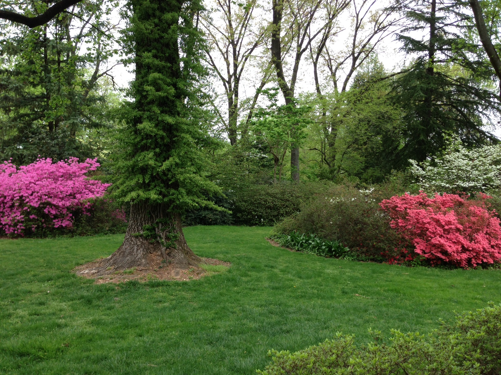 Canyon Country Discovery Center Monticello, 8 best McCrillis Gardens images on Pinterest | Beautiful gardens ...
