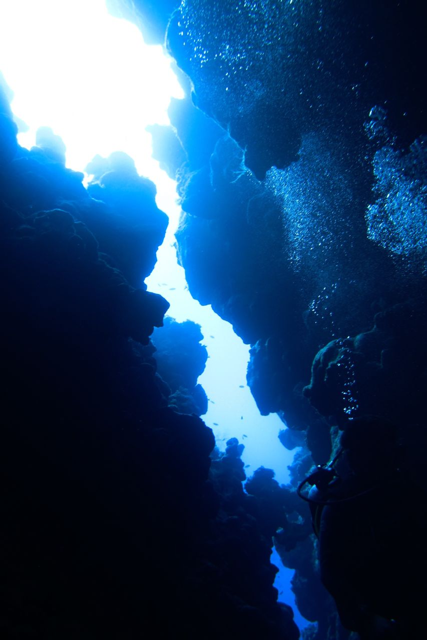 Canyon Dahab, Diving Dahab | Underwater Photo Essay - Angie Away