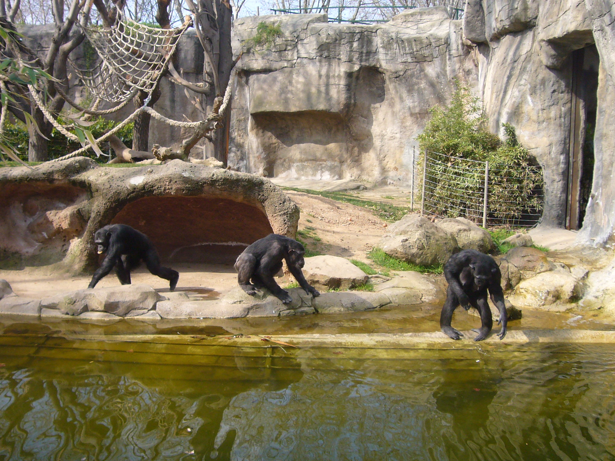 Carrer dels Escudellers Barcelona, Zoo Barcelona - , Spain | Things to do