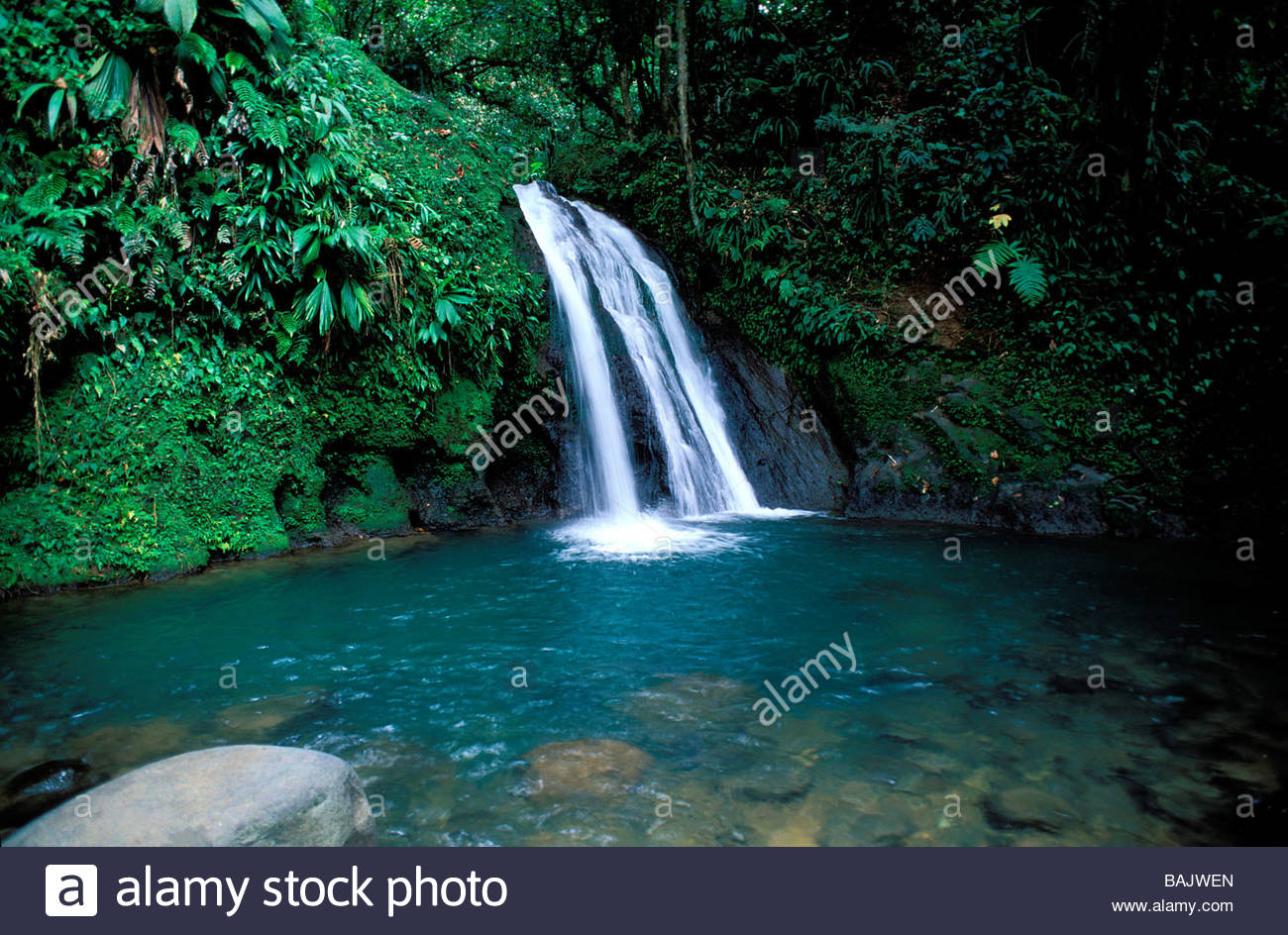 Valombreuse Floral Park Basse-Terre Island, France, Guadeloupe (French West Indies), Basse Terre, Petit Bourg ...