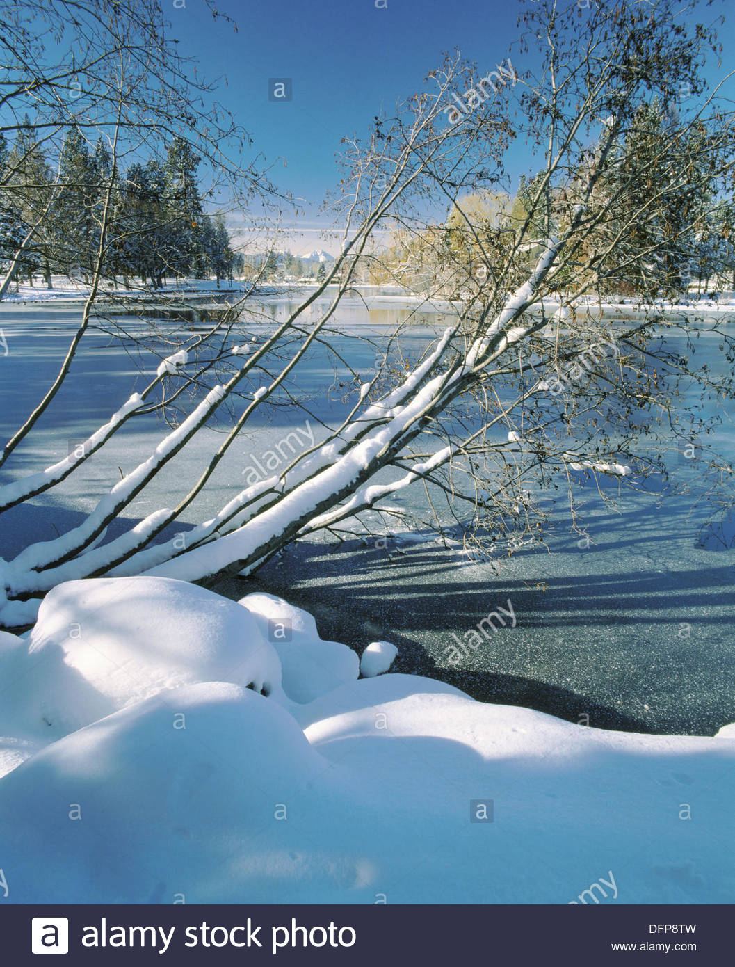 Cascade Lakes Scenic Byway Central Oregon, Winter on Mirror pond in Drake Park, Bend, Deschutes County ...