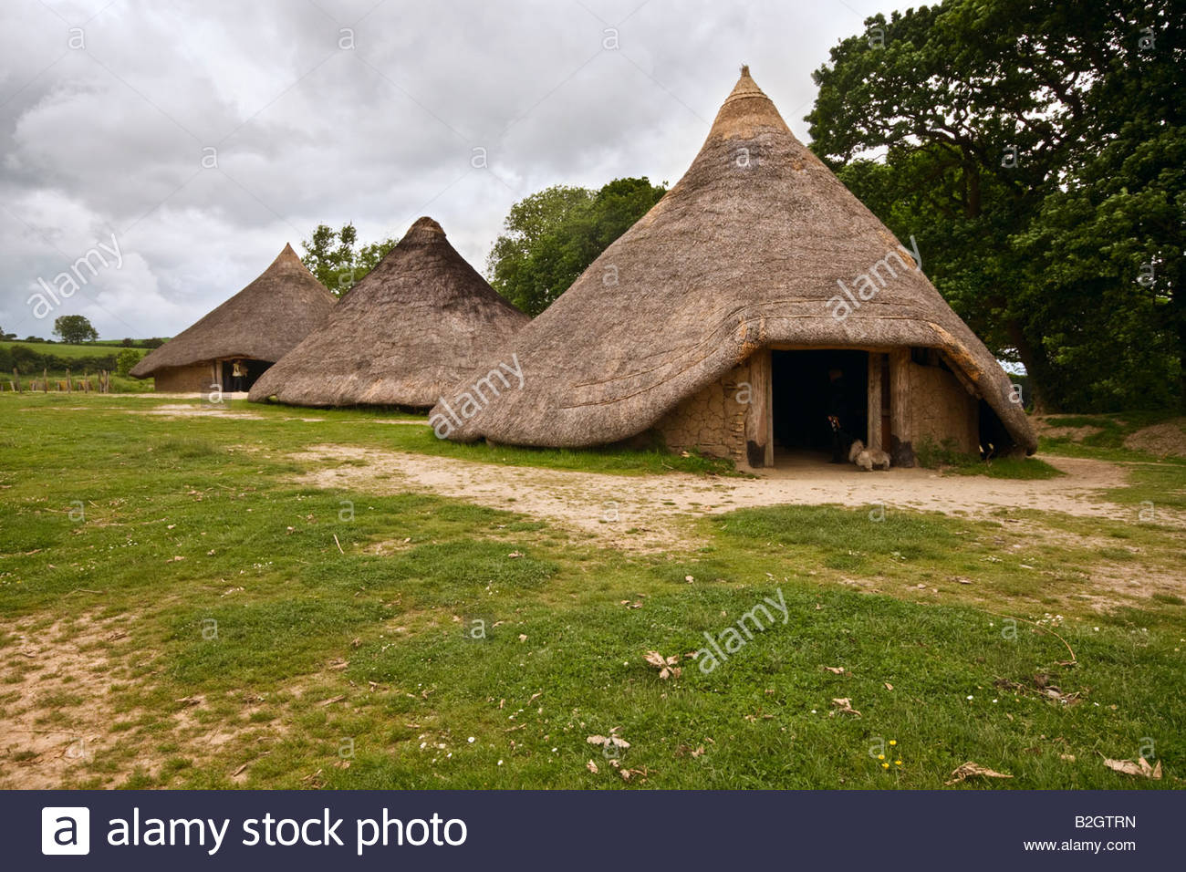 Castell Henllys Newport (Trefdraeth), Roundhouses at Castell Henllys Iron Age Fort, Pembrokeshire Stock ...