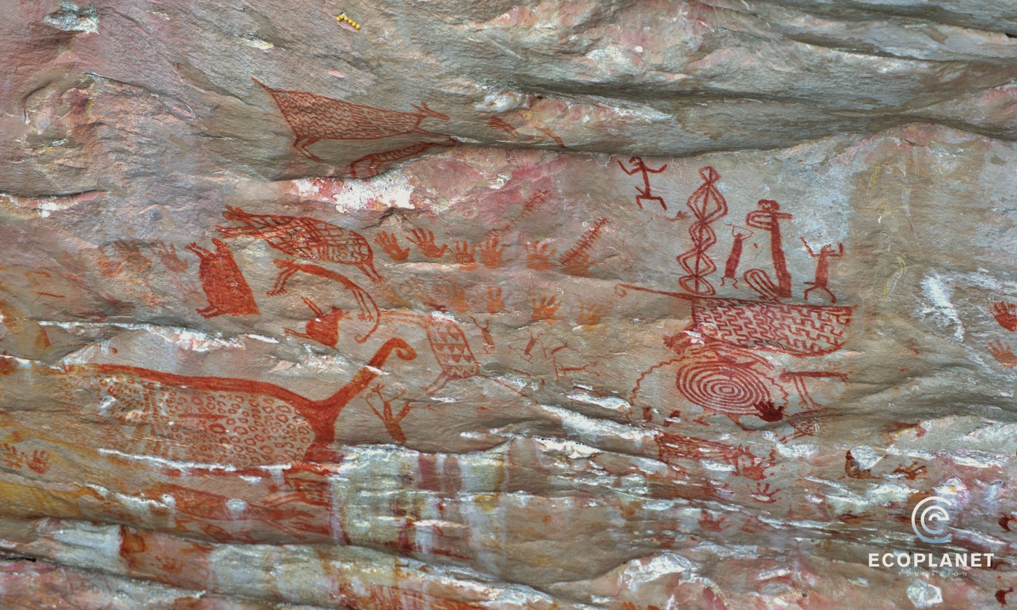 Cave Paintings The Amazon, Colombia: Stunning Amazonian Prehistoric Rock Art | WilderUtopia.com
