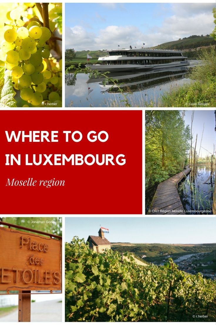 Caves St-Martin The Moselle Valley, 63 best Moselle Region images on Pinterest   Luxembourg, En place ...