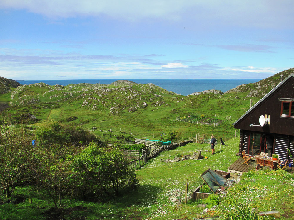 Ceilidh Place The Northern Highlands and the Western Isles, Assynt's Rare Animals?   Walkhighlands