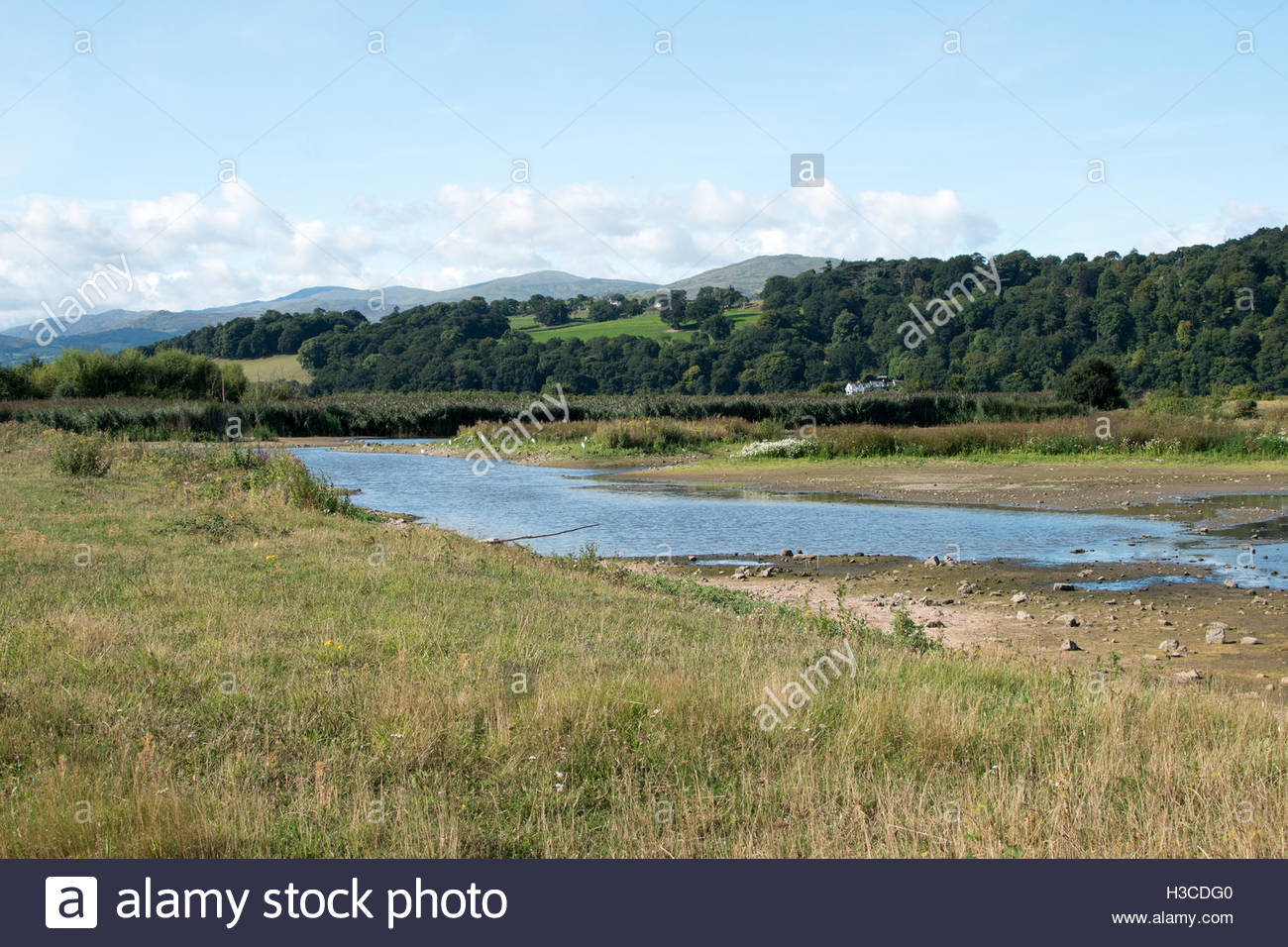 Conwy Nature Reserve Llandudno Junction, Conwy RSPB nature reserve Stock Photo, Royalty Free Image ...