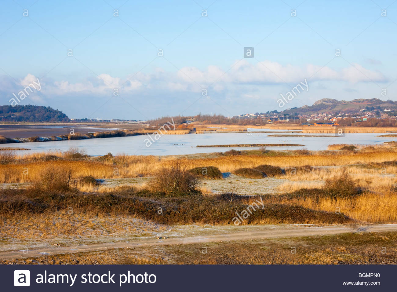 Conwy Nature Reserve Llandudno Junction, View across Conwy RSPB nature reserve coastal lagoons and ...
