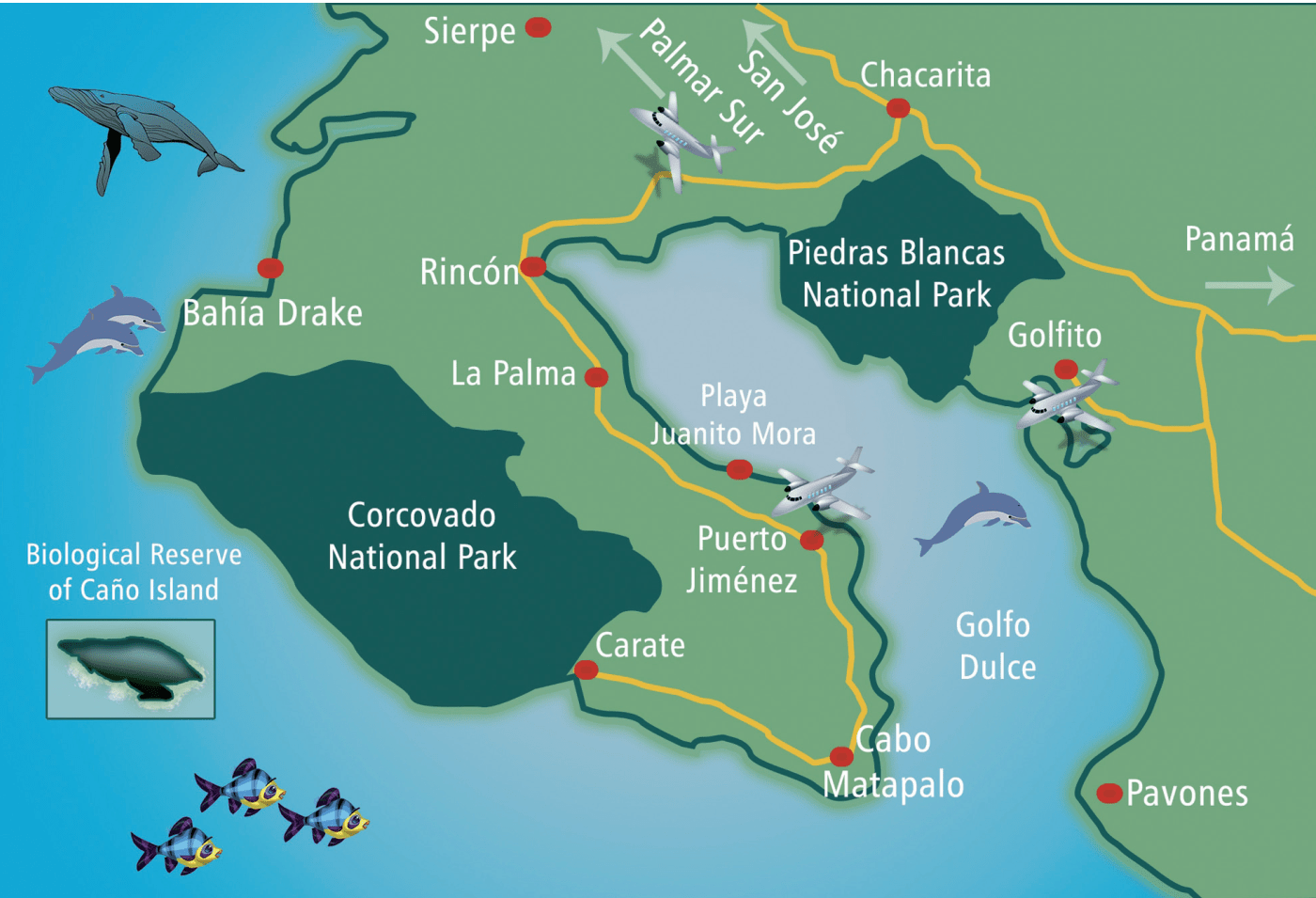 Corcovado National Park The Osa Peninsula and the South Pacific, How to get to Puerto Jimenez, Osa Peninsula in Costa Rica