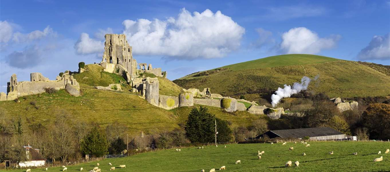 Corfe Castle Corfe Castle, Corfe Castle campsites | Best camping in Corfe Castle, Dorset