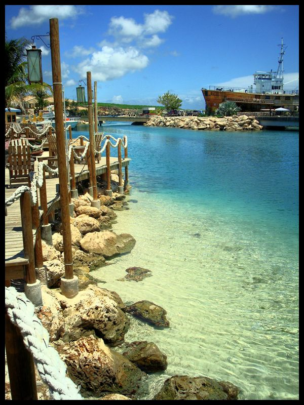Curaçao Sea Aquarium Southeast of Willemstad, 268 best Curacao images on Pinterest | Caribbean, Roots and ...
