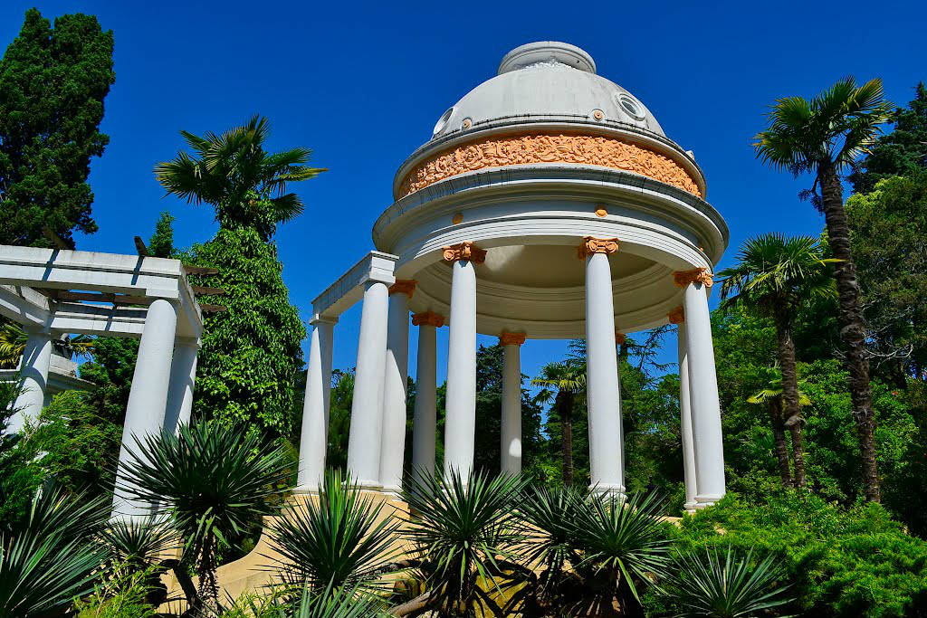 Dendrary Botanical Garden Sochi, Sochi-Russian South Pearl - Travel All Together