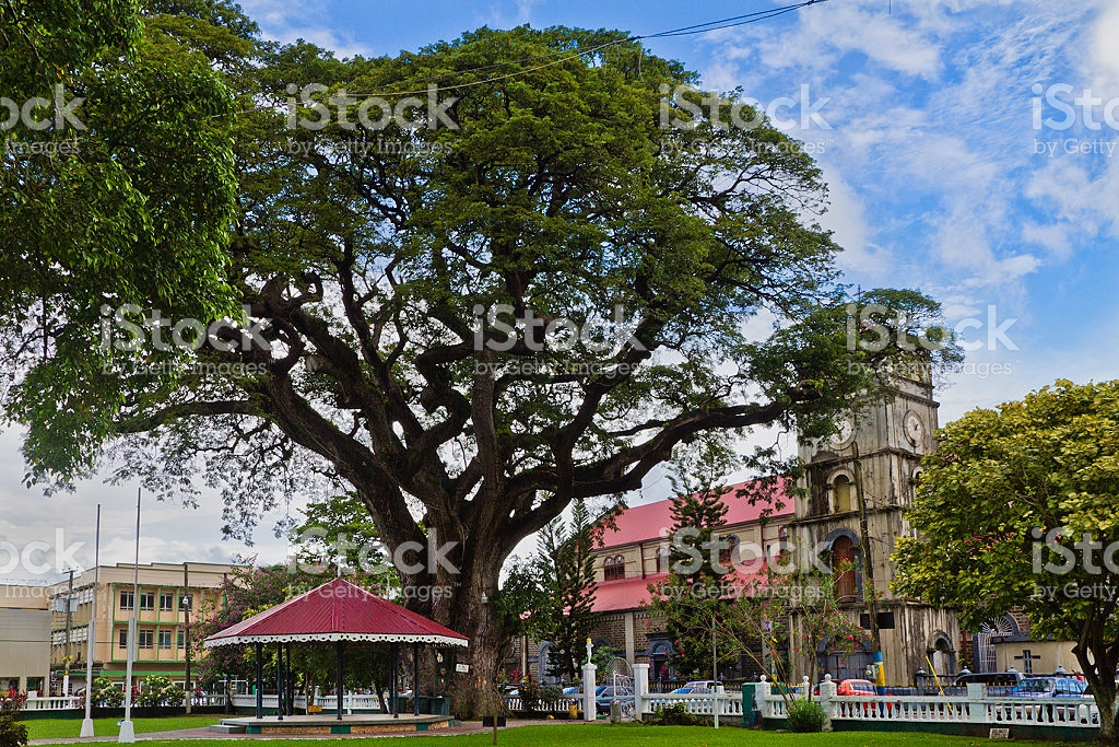 Derek Walcott Square Castries, Derek Walcott Square Castries Saint Lucia stock photo 185213014 ...