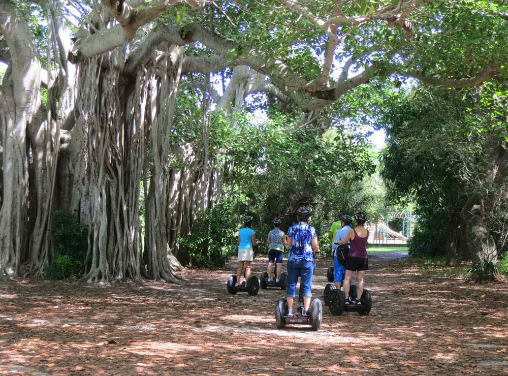 Dr. Von D. Mizell-Eula Johnson State Park Fort Lauderdale and Broward County, Hugh Taylor Birch Park in Fort Lauderdale: My favorite Florida ...
