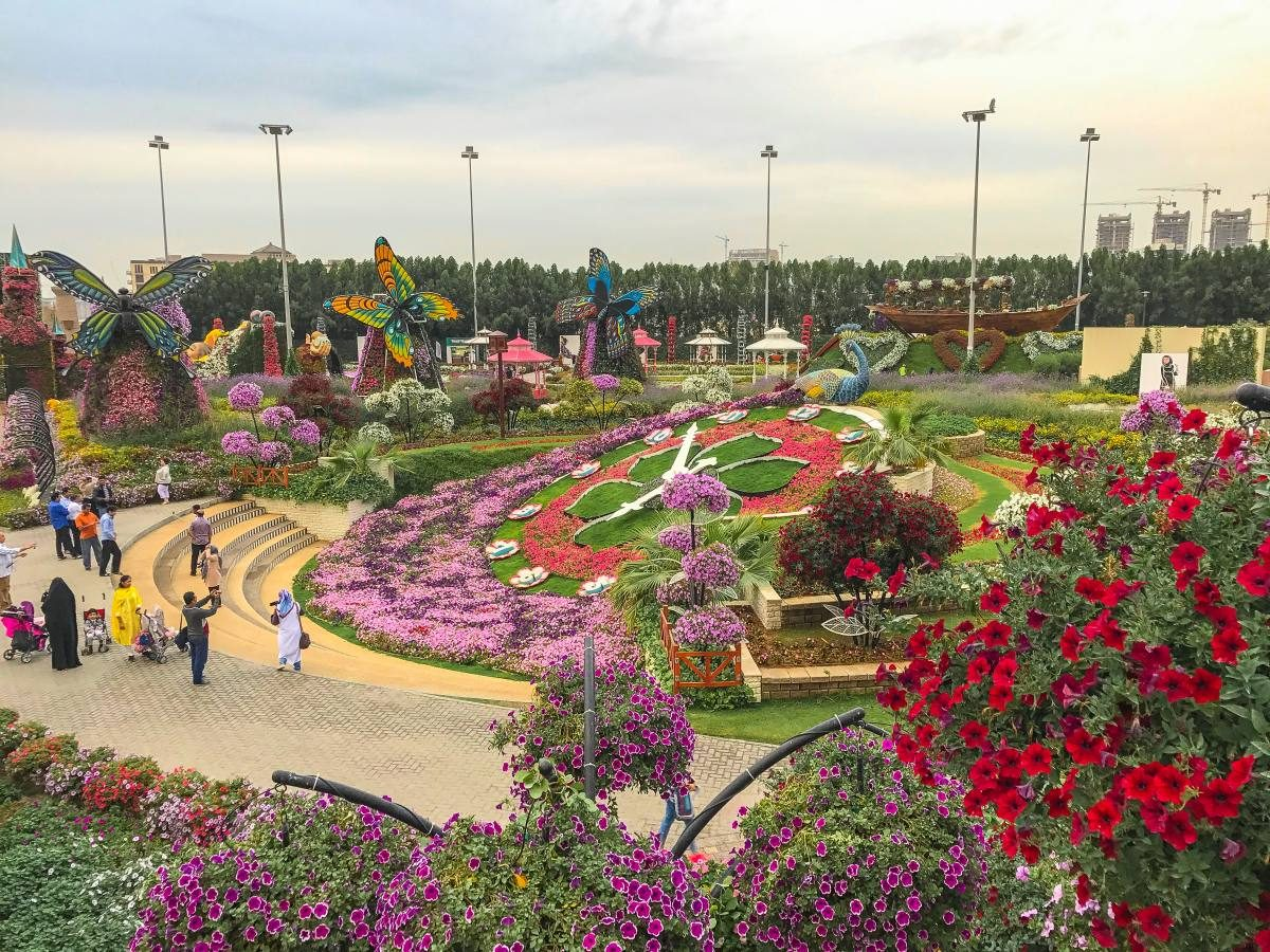 Dubai Miracle Garden Dubai, Dubai Miracle Garden: Must-Visit Place in Dubai | Anna Everywhere