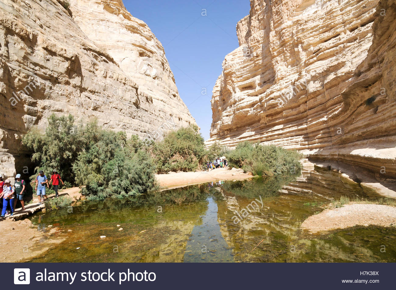 avdat national park