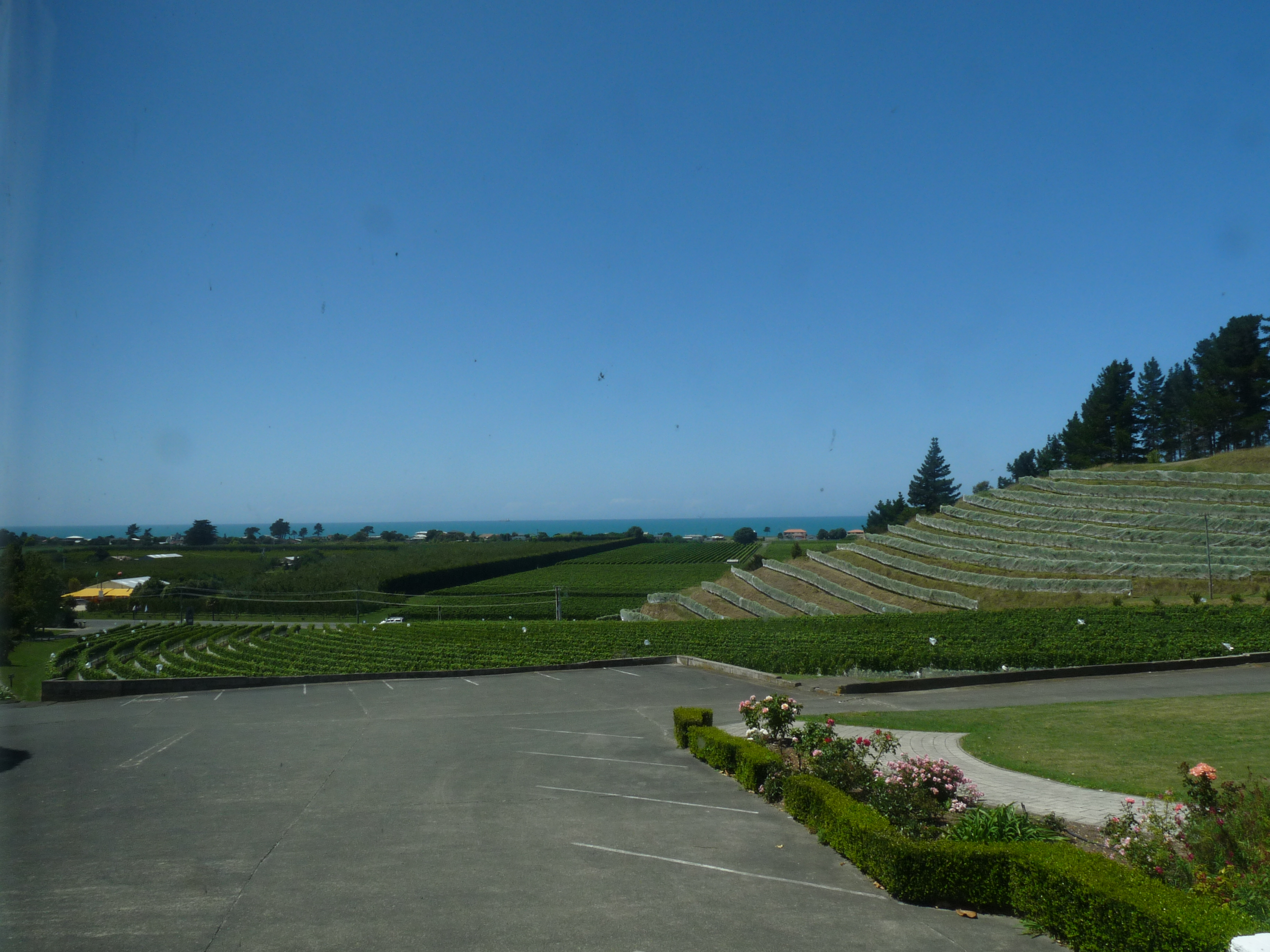 Esk Valley Estate Winery East Coast and the Volcanic Zone, Esk Valley Estate | The Trip | Pinterest