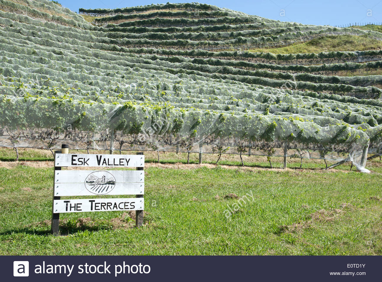 Esk Valley Estate Winery East Coast and the Volcanic Zone, Esk Valley wine estate Bay View Napier New Zealand The Hawkes Bay ...