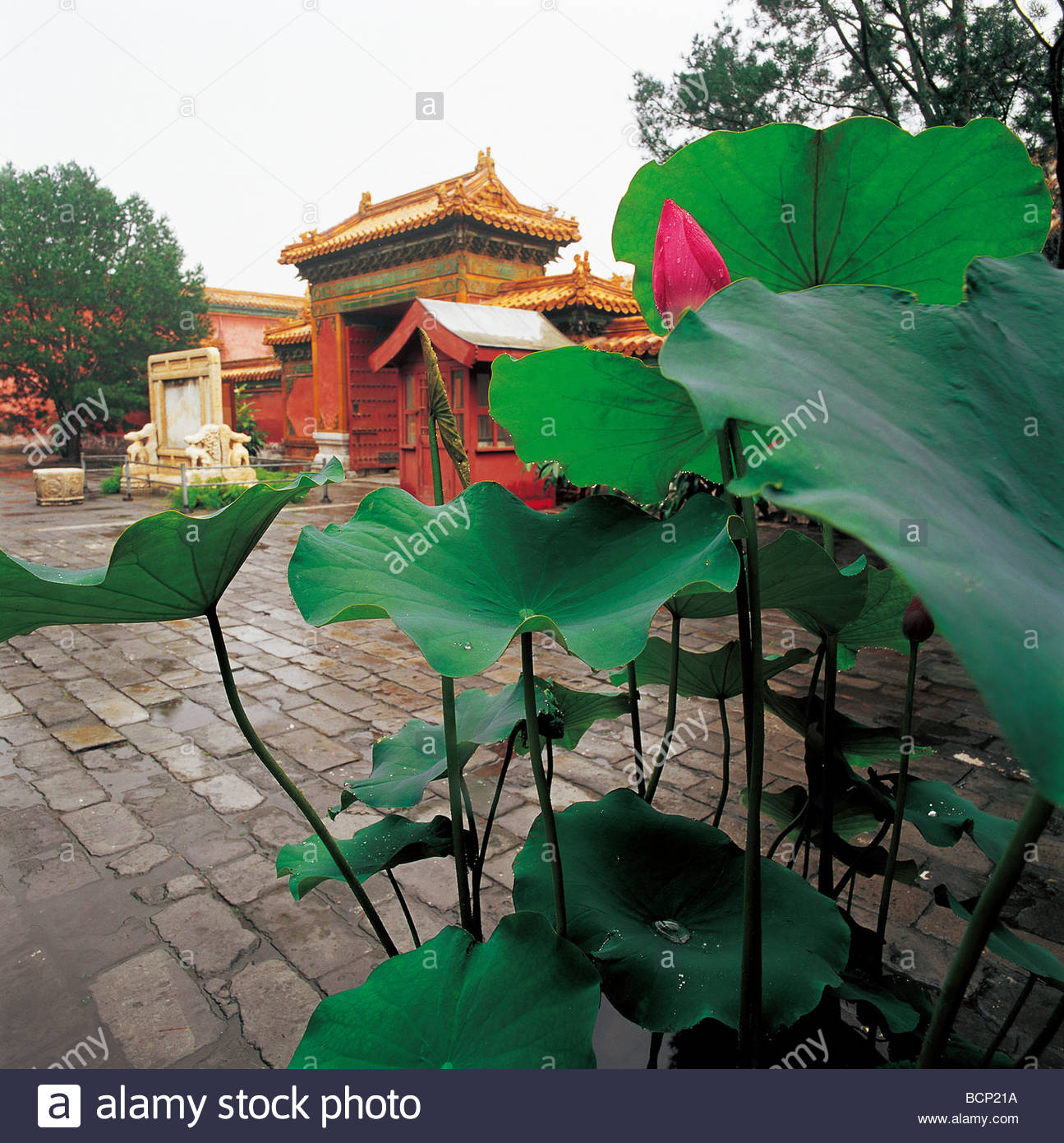Former French Legation Běijīng, Palace of Eternal Longevity in the Forbidden City, Beijing, China ...