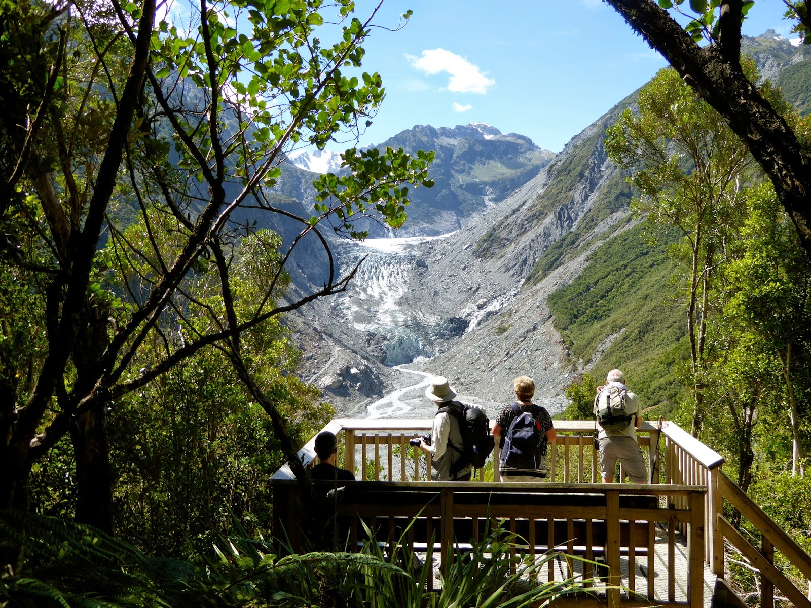 Fox Glacier Lookout Fox Glacier, School's Out Forever: FOX GLACIER VALLEY