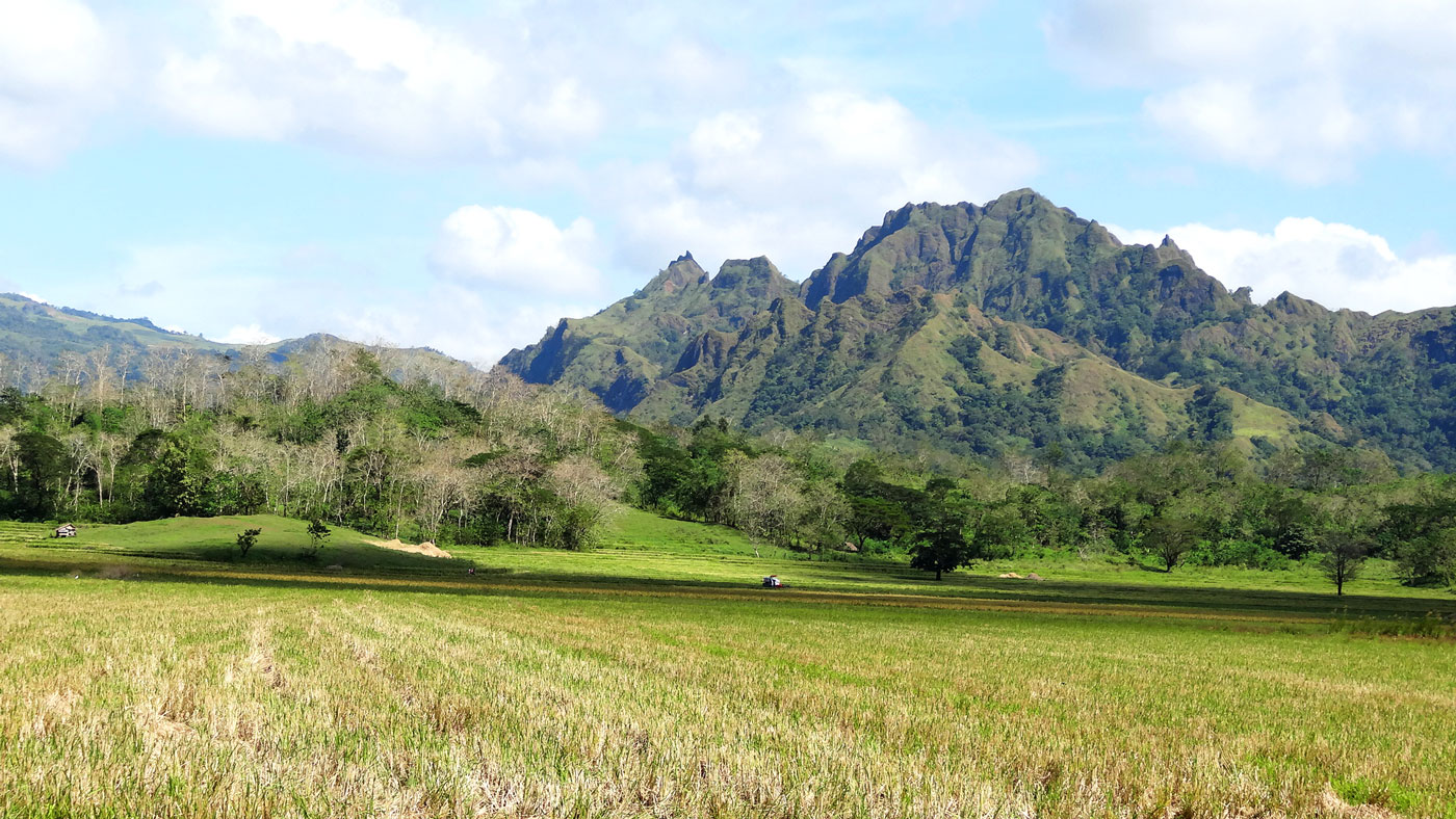 Gene Pool Mt Iglit-Baco National Park, Mindoro Is Not Just About Puerto Galera | DAILY TOUR