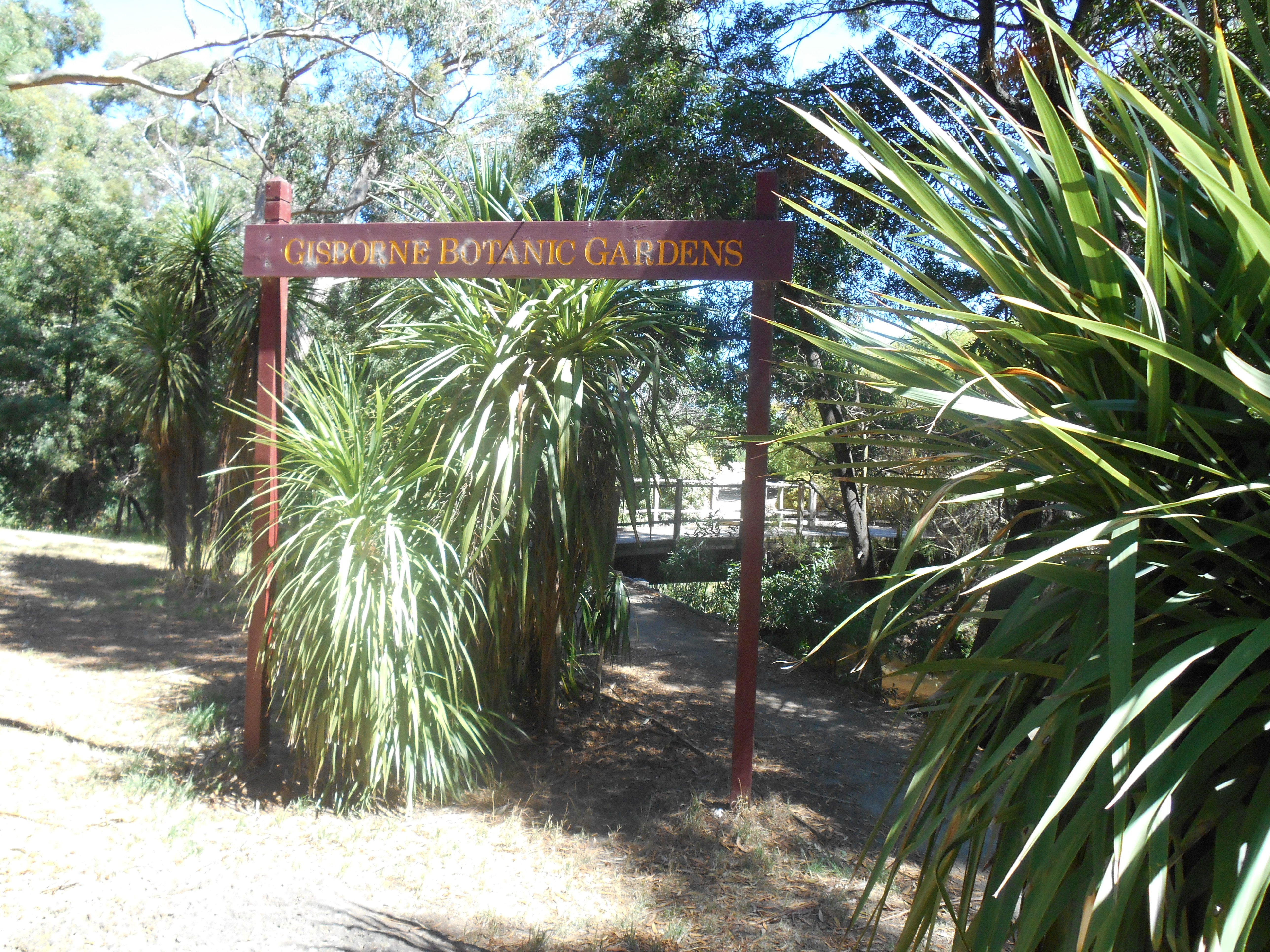 Gisborne Botanic Gardens Gisborne, aussie.wanderings. | A place for family and friends to see what I ...