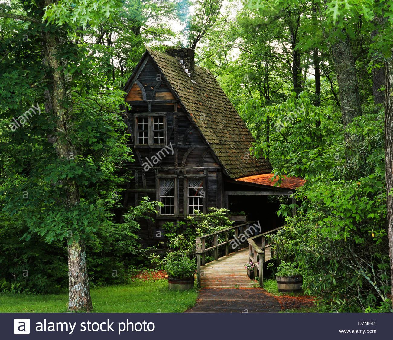 my delicate superior cabins acres portofolio trails dots with toxaway rentals grandfather x mountain cabin lake nc bleurghnow attic near on