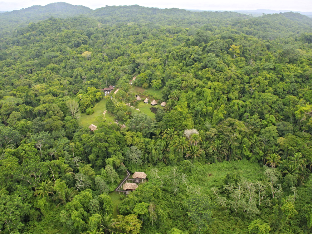Green Hills Butterfly Ranch and Botanical Collections The Cayo District, Cayo District Top Picks For Adventures & Activities - Belize ...