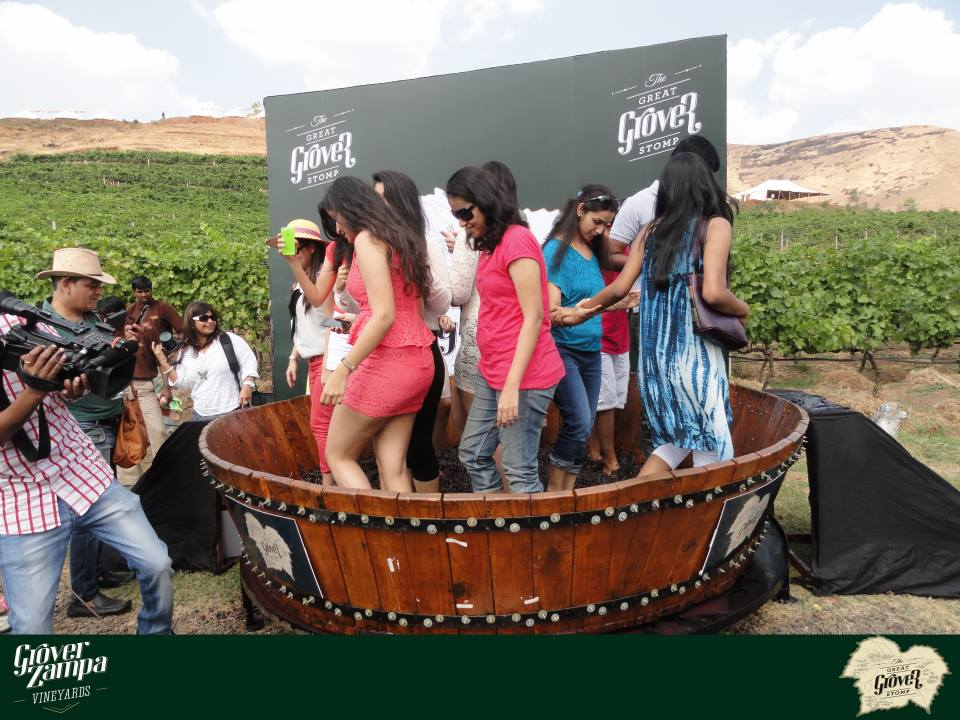 Grover Zampa Nasik, The Great Gover Stomp — Wines of India | Indian wine tour | Nashik ...
