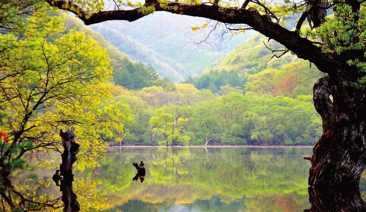 Anguk-sa Muju & Deogyusan National Park, Juwangsan National Park, Korea | SK | Pinterest | Korea, Park and ...