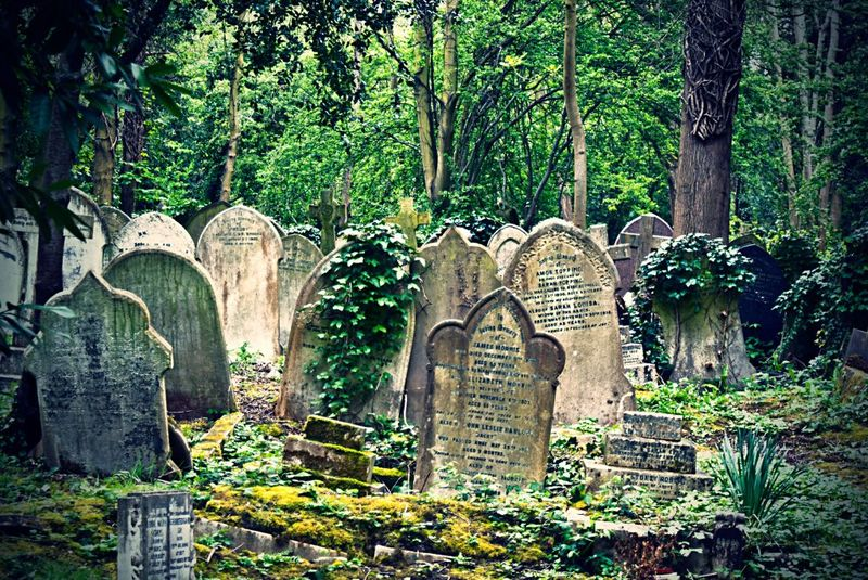 Highgate Cemetery London, Highgate Cemetery: a mysterious place in London - Universal Tour Guide