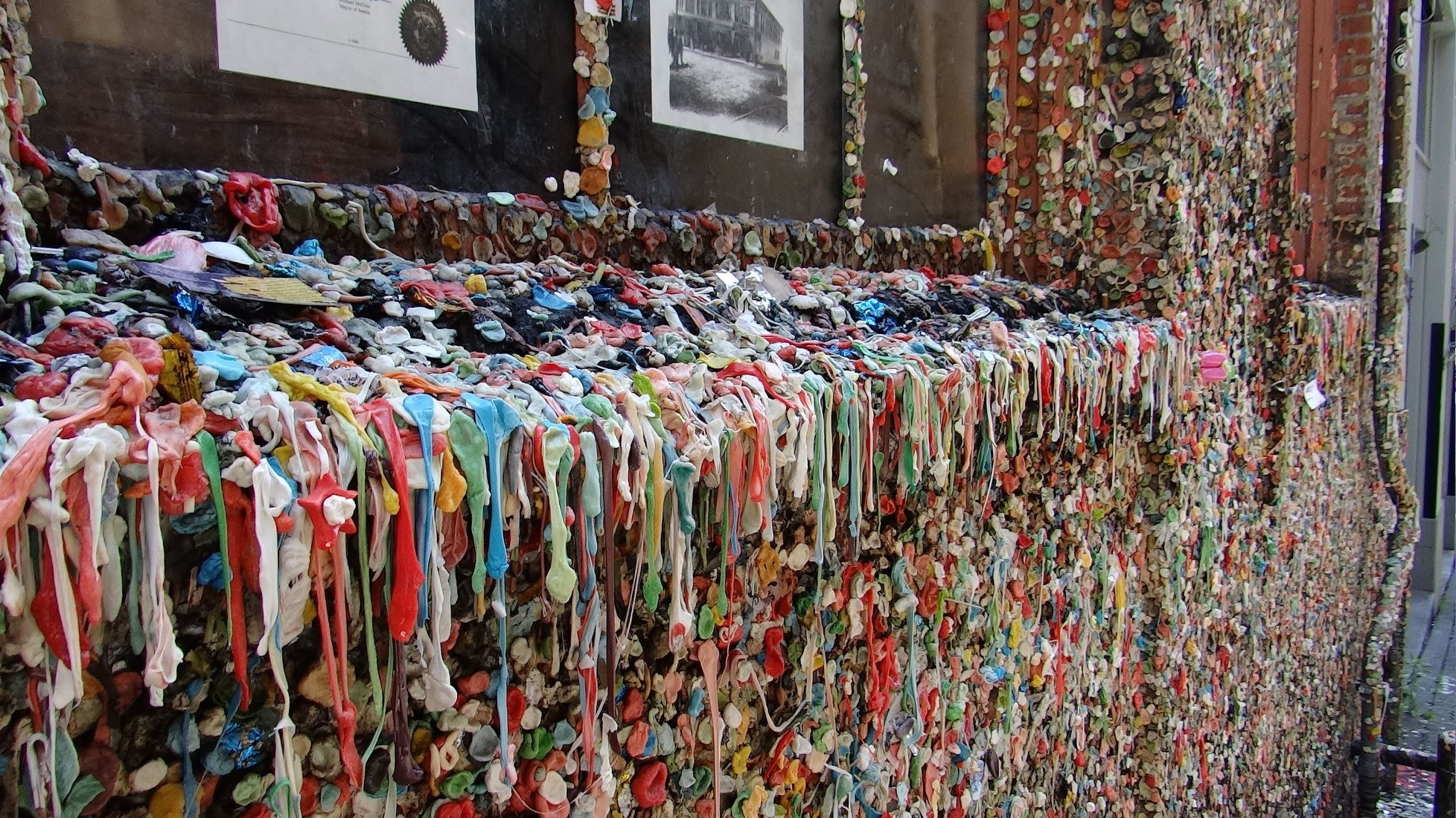 Hiram M Chittenden Locks Visitor Center Seattle, Seattle, Washington - Gum Wall HD (2014) - YouTube