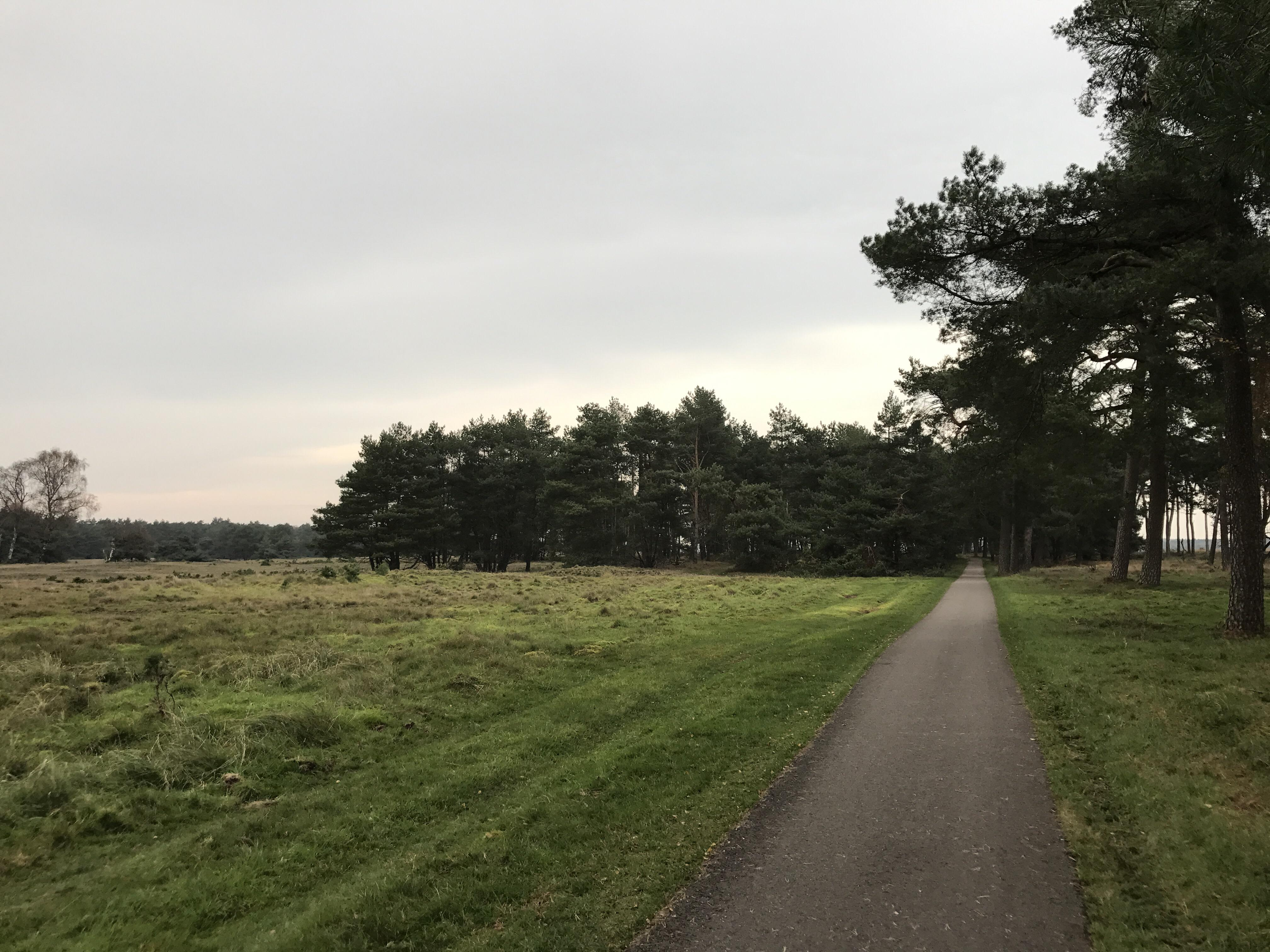 Hoge Veluwe Day Trips from Amsterdam, Took a day trip to Het Nationale Park De Hoge Veluwe today. Less ...